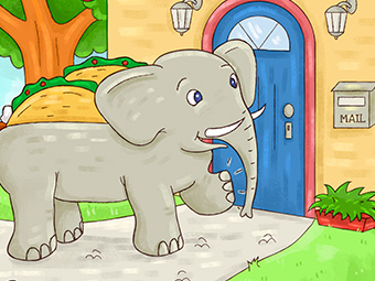 an Elephant's Taco's Tale